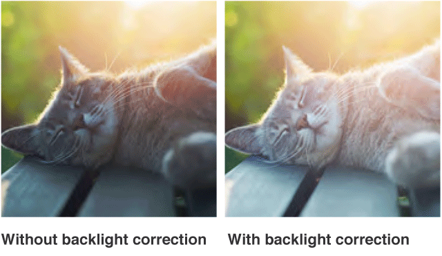 Without backlight correction / With backlight correction