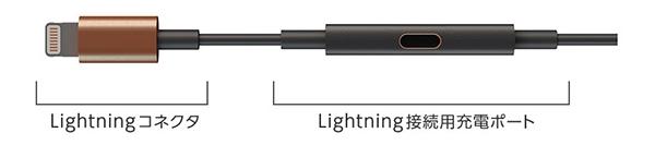 LightningコネクタとLightning接続用充電ポート