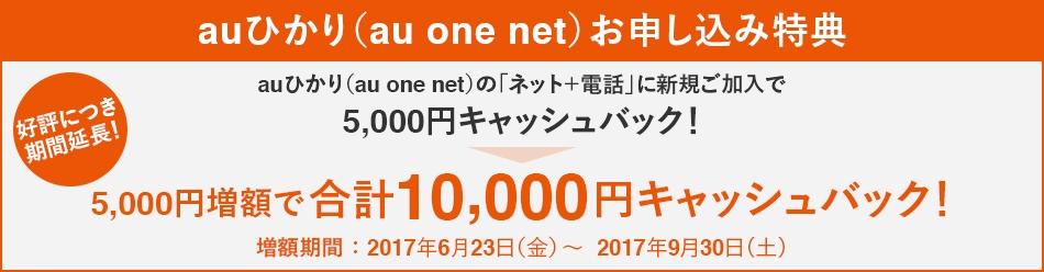 auひかり (au one net) お申し込み特典