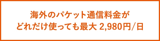 海外ダブル定額(3G)