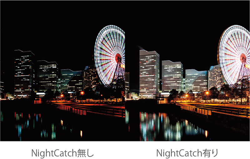 NightCatch無し NightCatch有り