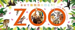 auで動物園に行こう!ZOO この春、無料で入れまZOO!の画像